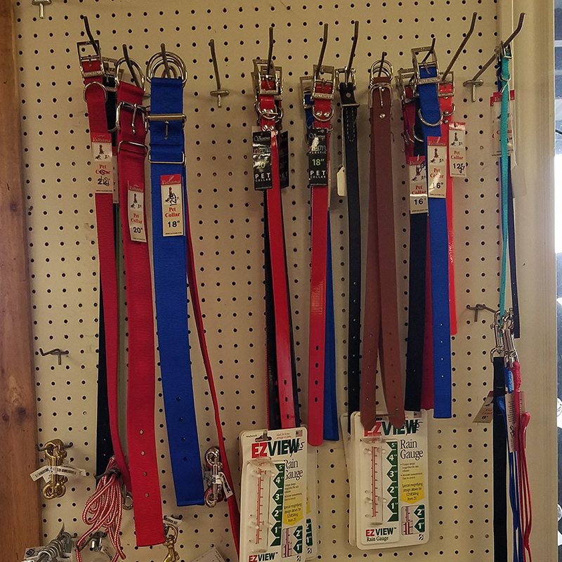 Dog Collars by Valhoma Extra Small 12 in