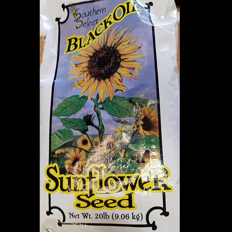 Seed - Sunflower Seeds