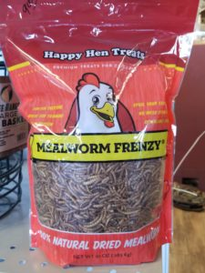 Mealy Worms